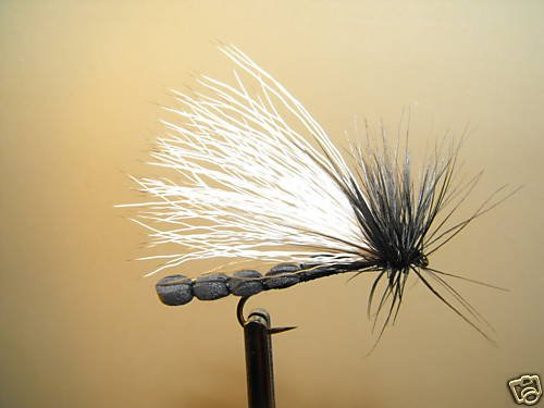 12 BLK Adult Stonefly  Dry Fly Trout, Steelhead, Salmon