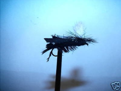 1 Dzn Dave's Prachute Black Cricket  Dry Fly Assortment
