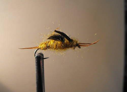 1 dozen - Golden Stonefly Nymph - Trout Wet Fly