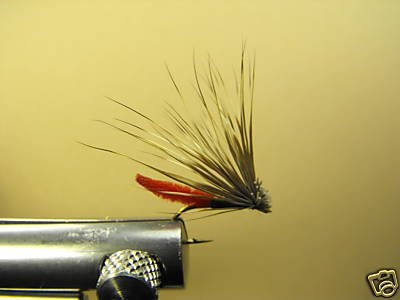 12 Extended Bodied Elk Hair Caddis - Dry Fly - Red