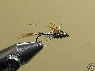 12 Brass Bead Lightning Bug Nymph Wet Fly Trout