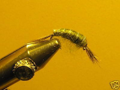 1 Dzn Olive Scud Nymph Wet Fly Trout