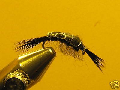 1 Dzn Black Scud Nymph Wet Fly Trout