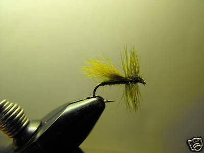 1 Dzn - Olive  Fluttering Caddis  - Dry Fly -  Trout