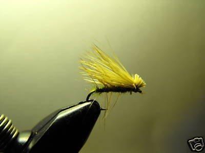 1 Dozen - Olive Caddis - Midge Dry Fly - Trout