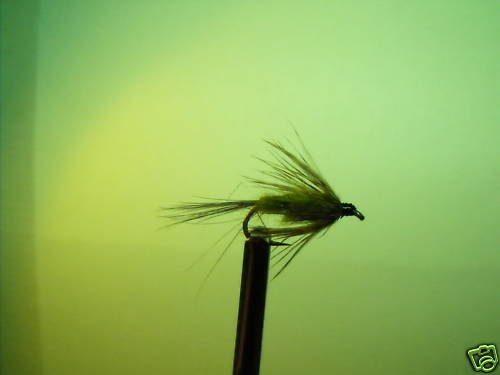 1 Dzn - Soft Hackle Olive Caddis I  Nymph Wet Fly Trout