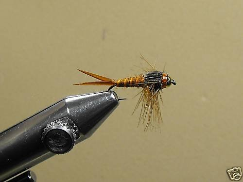 12 Brass Bead Birds Nest Nymph Wet Fly Trout, Steelhead