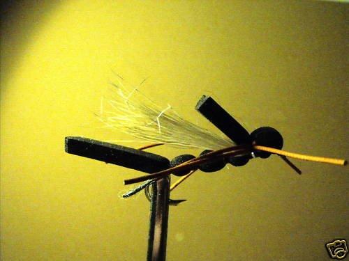 1 Dzn  - Foam Black Hopper  Dry Fly Assortment