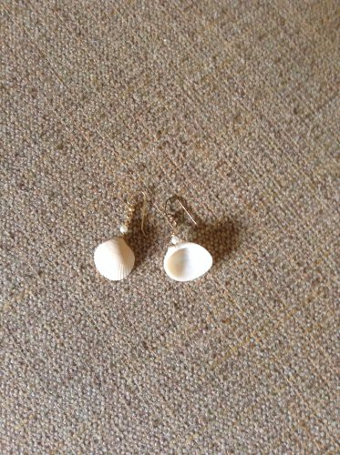 Real seashell beige earrings