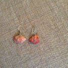 Orange color real seashell earrings