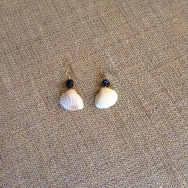 Medium shell with black bead earrings