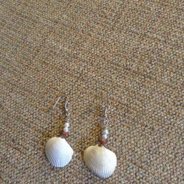 Handmade seashell earrings