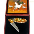 White Horse Collectable knife