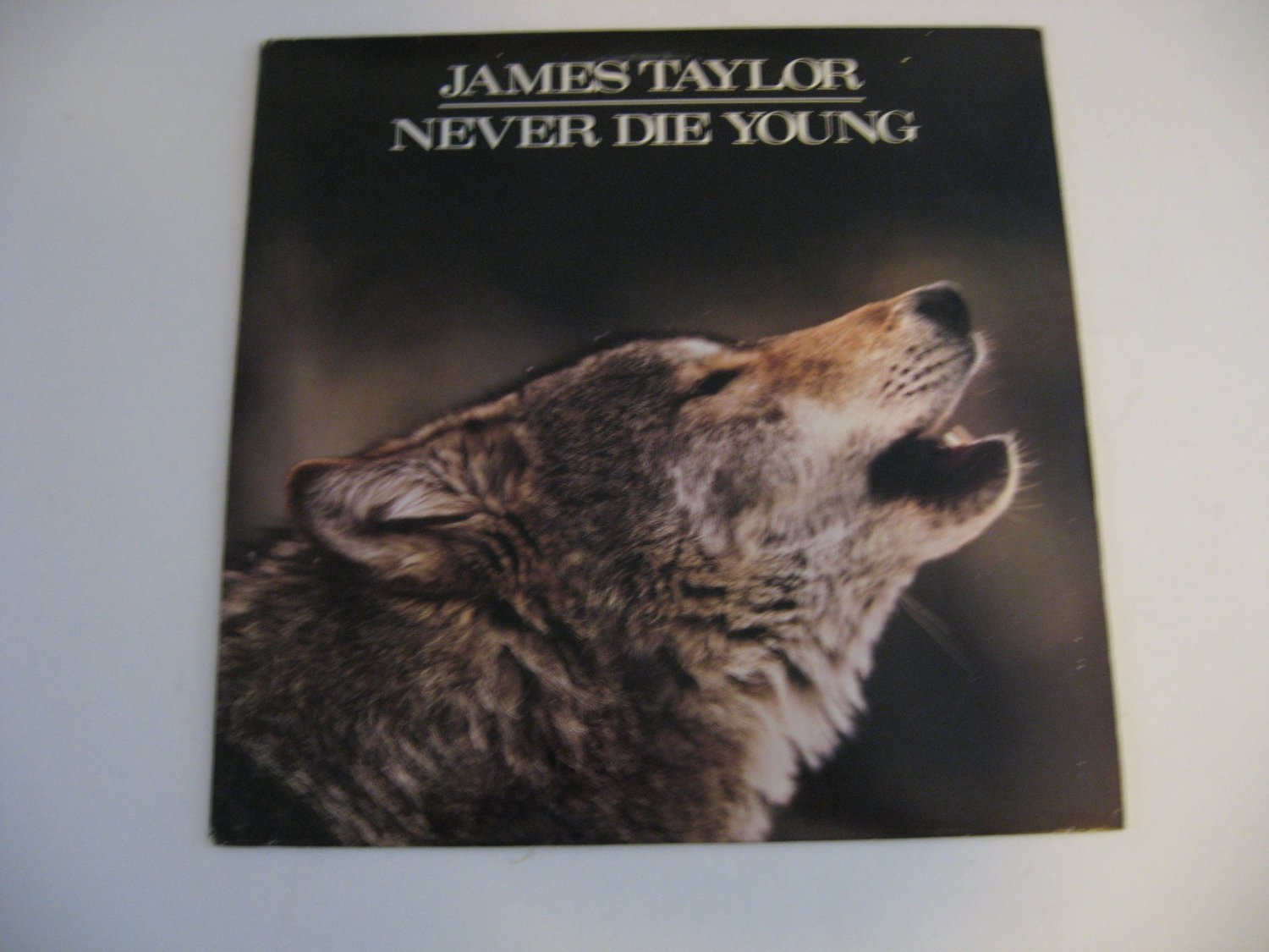 James Taylor - Never Die Young - Circa 1988
