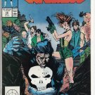 PUNISHER # 12, 8.0 VF