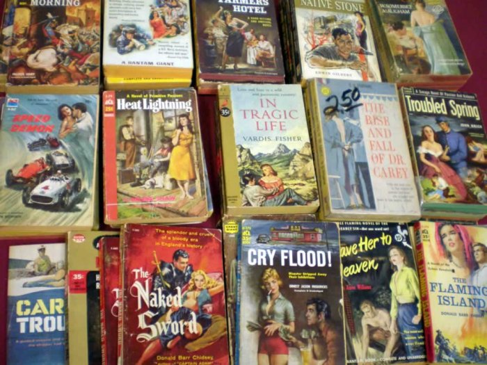 VINTAGE ROMANCE PAPERBACK LOT OF 25 # 25, 2.0 GD
