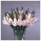 30-White-Tulip Lighted Bouquet -2308