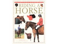Riding a Horse by Debby Sly