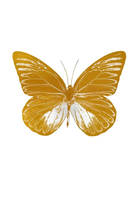Damien Hirst Print Gold Butterfly Print