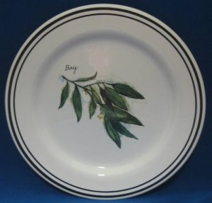 WILLIAMS SONOMA Herbs BAY 1 Salad Plate Portugal MINT