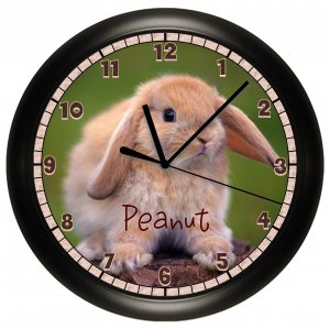 Personalized Bunny Rabbit Wall Clock