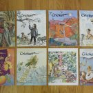 CRICKET MAGAZINES HOMESCHOOL BOOKS LOT OF 9 MIDDLE SCHOOL READING LITERATURE LANGUAGE ARTS
