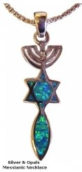 Menorah, star and fish  silver and opals  necklace -2 sided
