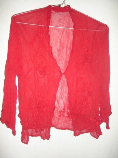 Red chiffon blouse with hand embroidery