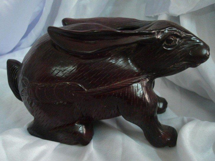 Nacrine wood rabbit