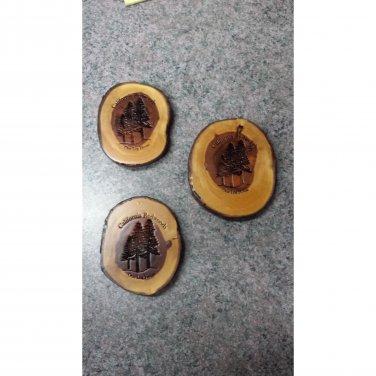 Redwood LIMB Coaster Laser Engraved #4583