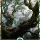 Foil Battle for Zendikar Full Art Forest #274