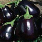 Black Beauty Eggplant Seeds - 50