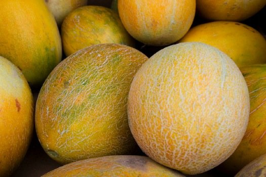 Ananas Pineapple Melon (Cantaloupe) Seeds - 50