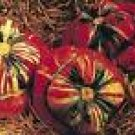 Turks Turban Pumpkin Seeds - 20