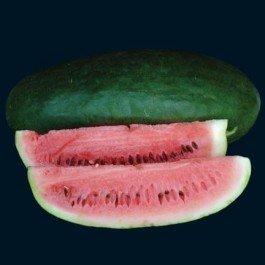 Tom Watson Watermelon Seeds - 20
