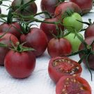 Black Cherry Tomato Seeds - 30
