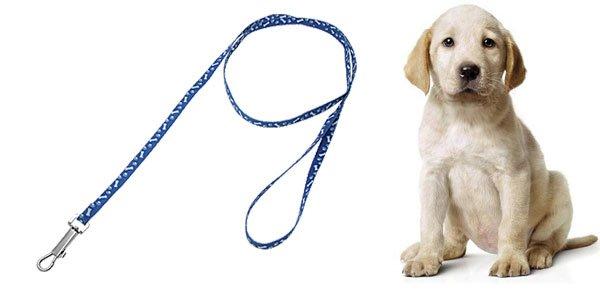 Blue Puppy Pet Dog Pulling Leash with Bones Pattern