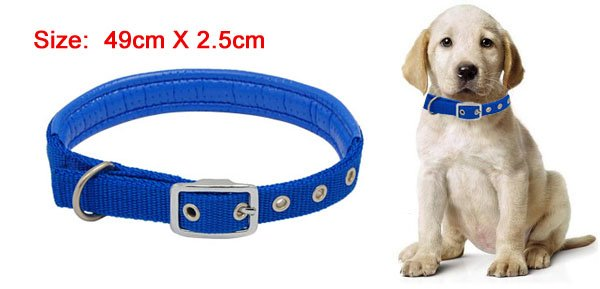 Blue Leather Nylon Buckle Dog Pet Neck Collar Strap Band