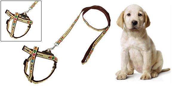 "Lovely Dog Pet's Nylon Leash Lead & Harness 45"""