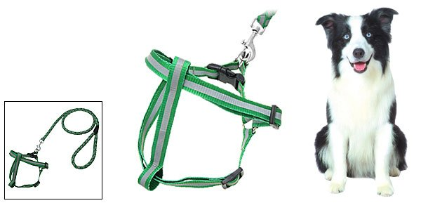 Step-In Nylon Dog Pet Safe Reflective Harness and Leash Set- Medium