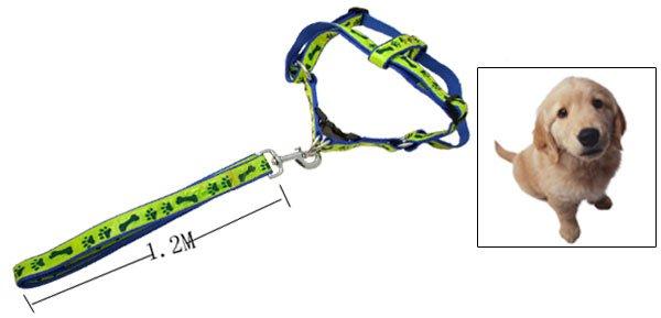 Cool Paws Bones Design Nylon Pet Dog Harness and Leash Set Blue