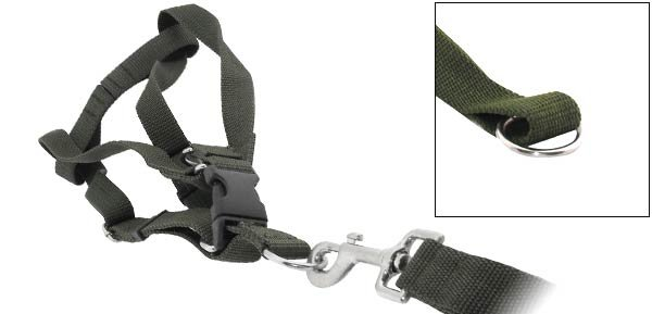 DOG Web Collar Harness Leash Strap for Large dogs - Army Green