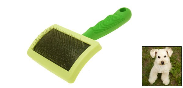 Soft Pet Dog Cat Bristles Grooming Brush with Green Handle