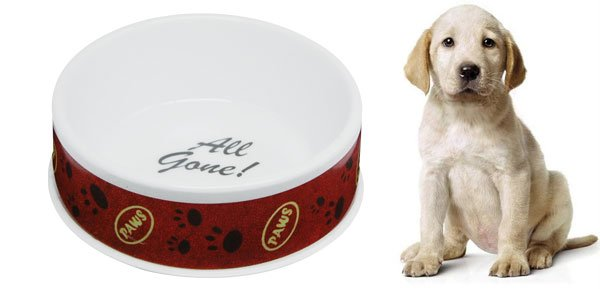 Paws Design Cat Dog Pet Solid Plastic Water Food Bowl