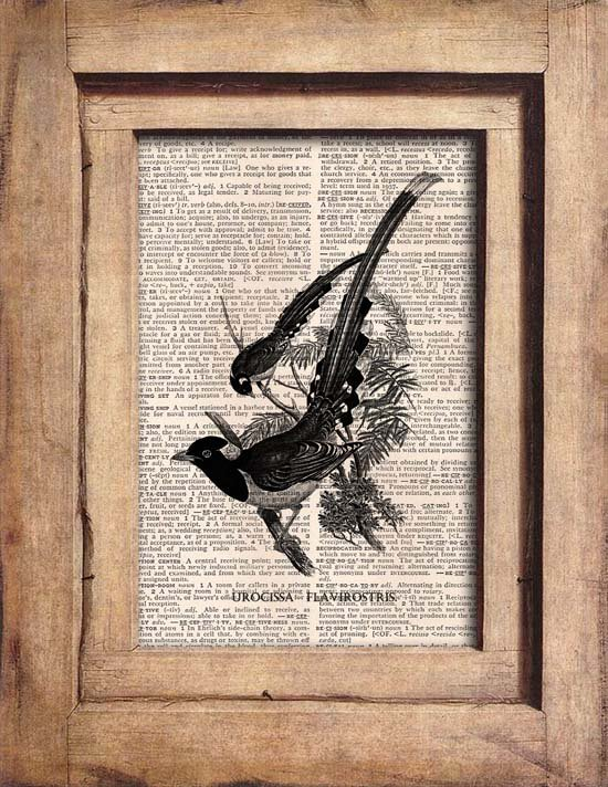Art Print, Vintage, BIRDS, Dictionary Page Print 0090