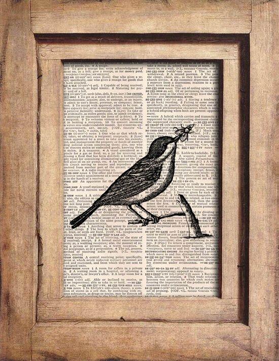 Vintage, Bird, Dictionary Page Print 0073