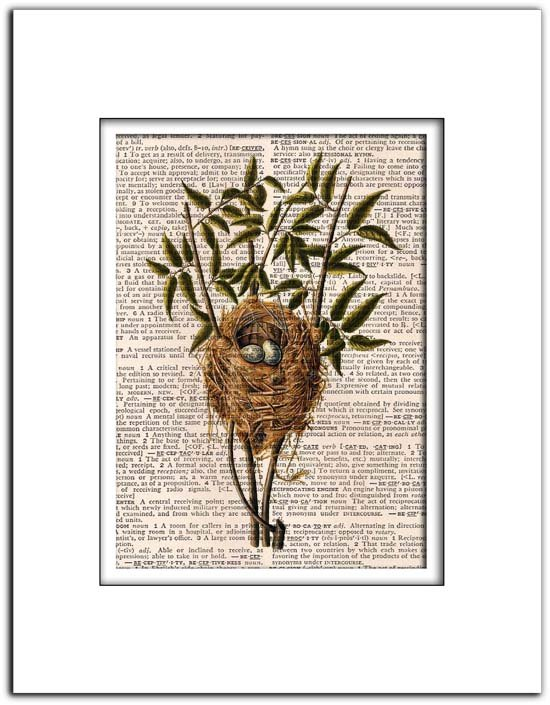 Vintage Bird Nest, Birds, Dictionary Page Print 0030