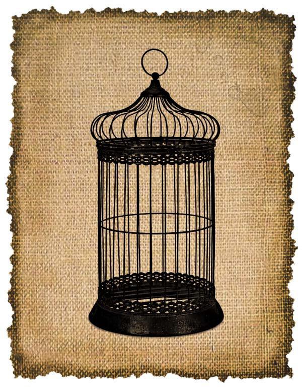 VINTAGE Birdcage, Iron on, Ephemera, Altered, Digital Image Transfer No. 205