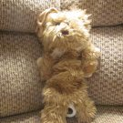 Kids II Angel Winged Furry Teddy Bear Musical Crib Pull Toy Lovey Plush