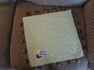 Sweet Dreams Teddy Bear Resting Crescent Moon Green Minky Dots Taggies Security Blanket